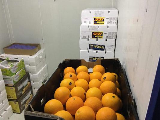 bảo quản trái cây trong kho lạnh 2