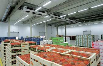 bảo quản trái cây trong kho lạnh 3