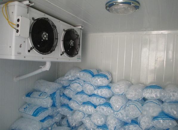 kho lạnh bảo quản đá viên 1