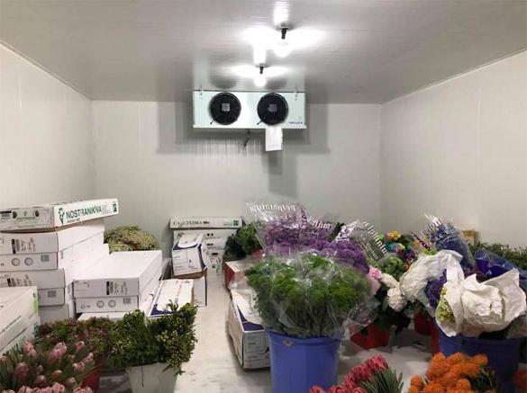 kho lạnh bảo quản hoa tươi 3