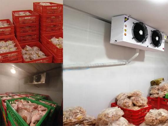 kho lạnh bảo quản thịt 2